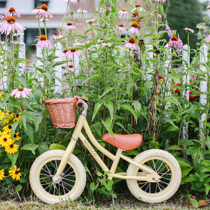 Bicicletas y más