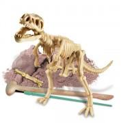 Dino Kit Tyrannosaurus Rex