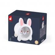 Hucha Conejo