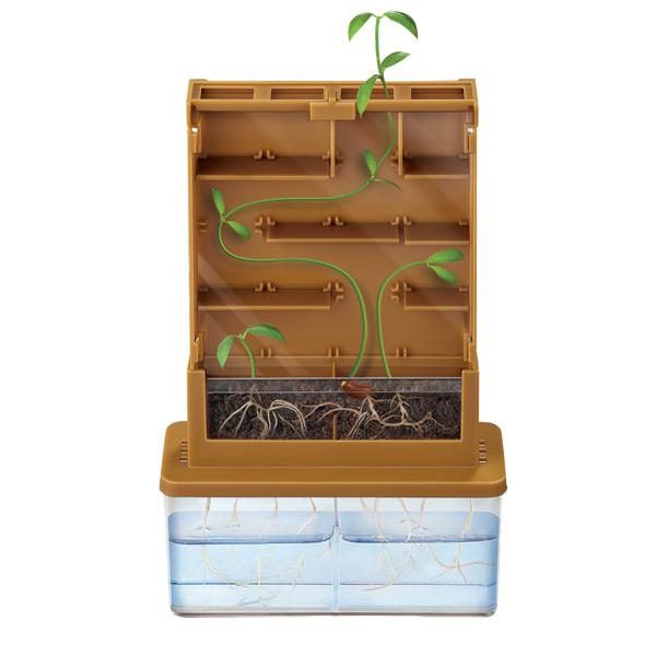 Jardinera Laberinto