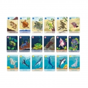 Juego de 7 Familias Reino Animal Colección WWF®