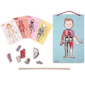 Juego de Anatomía: Bodymagnet