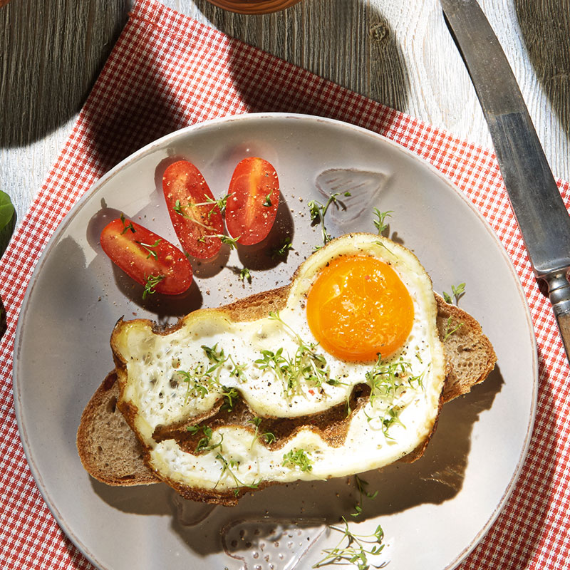 Molde para Huevo Frito: Cocodrilo