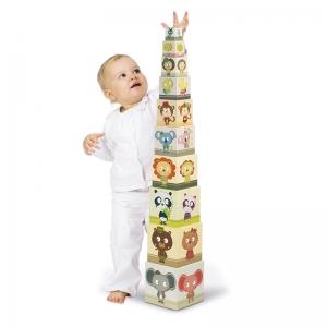 Pirámide de Cubos: Retrato de Familia