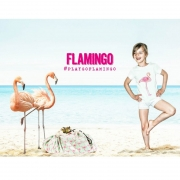 Play&Go Flamingo
