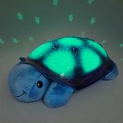 Tortuga Cloud B Planetario Azul