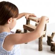 Troncos de Construcción Branch Blocks