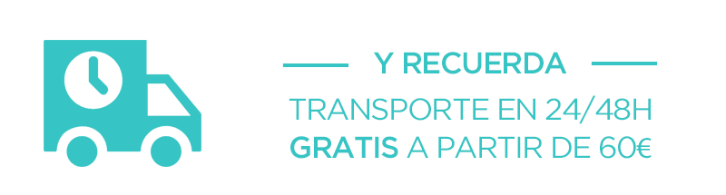 Promoción Transporte Gratis